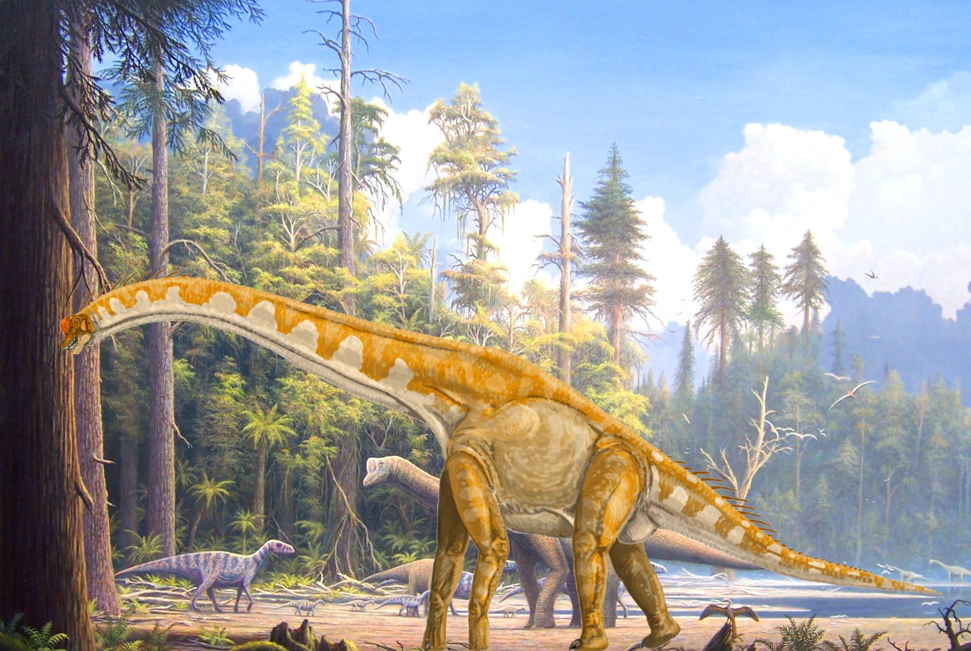 Giraffatitan Sauropoda