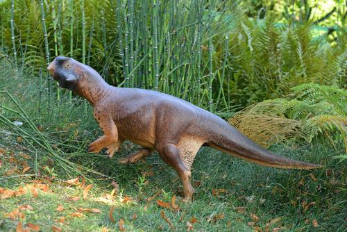 Welke Kleuren Haddendinosauriërs?