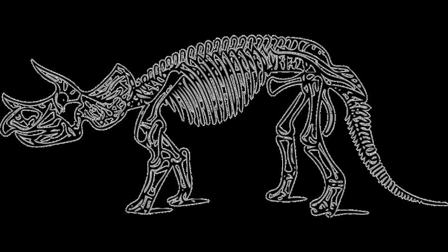De Triceratops